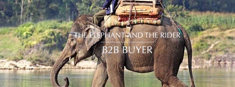 elephant-and-rider-b2b-buyer