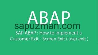 sap user exit