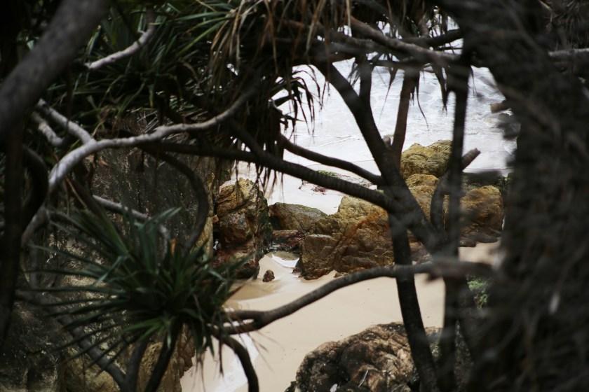 hemlängt valspan och den finaste av stränder på en och samma dag