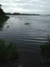 High tide at Barn Island, Stonington, CT.