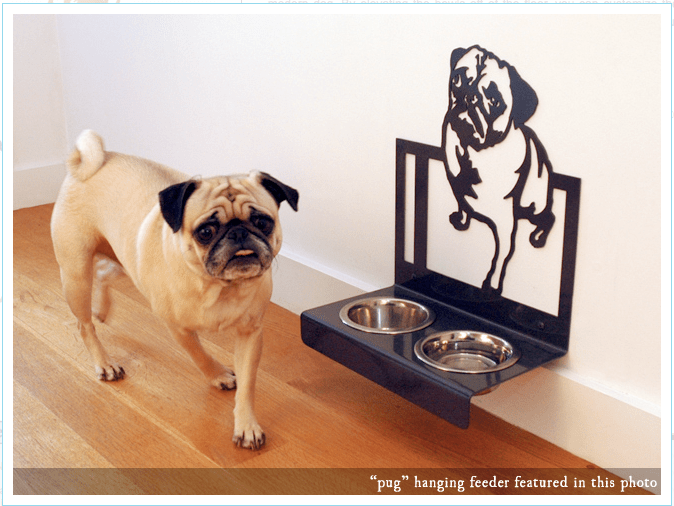 these creatures hanging feeder pug