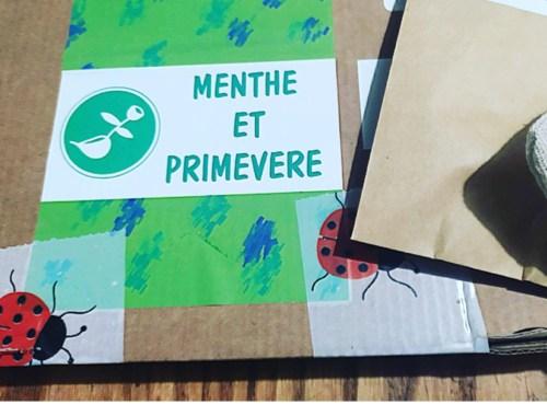 Menthe et Primevère ou comment reconnecter les enfants à la nature ?