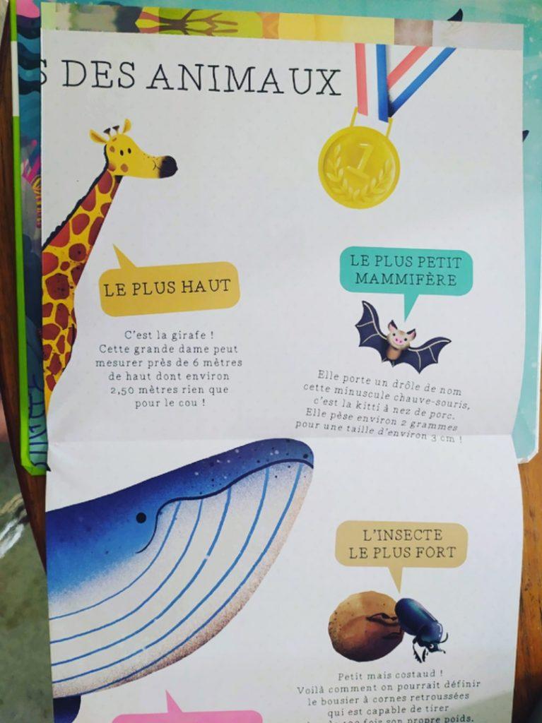 Découverte : L'encyclo des petiots « Bonjour les animaux ! »