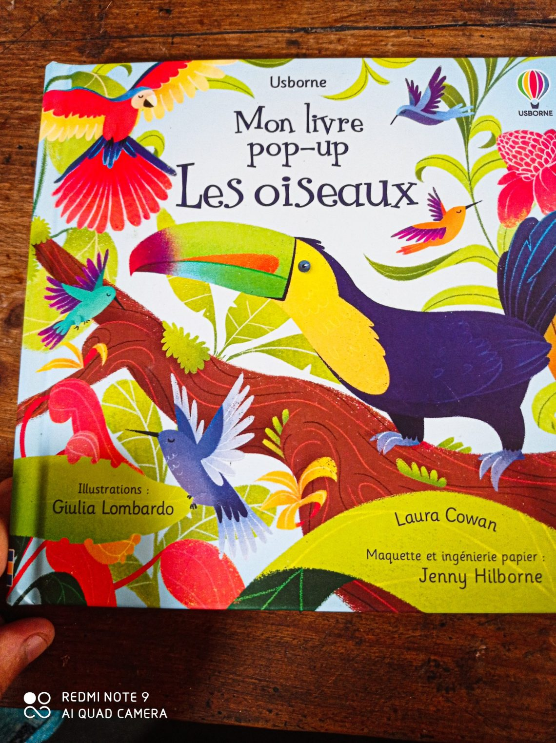 Coup de cœur : Livre pop-up les oiseaux éditions Usborne.