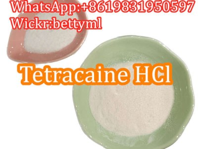 Cas:136-47-0 factory Tetracaine hydrochloride,tetracaine hcl powder favorable price safe delivery