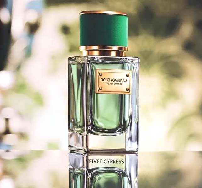 Dolce & Gabbana announces launch of Velvet Cypress fragrance