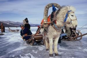 Pferdeschlitten_Mongolei