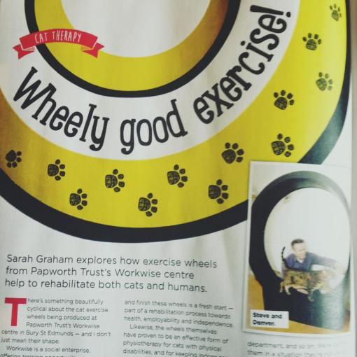 Wheely good exercise