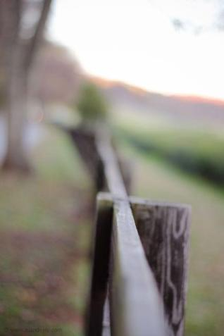 Fence Post MJ