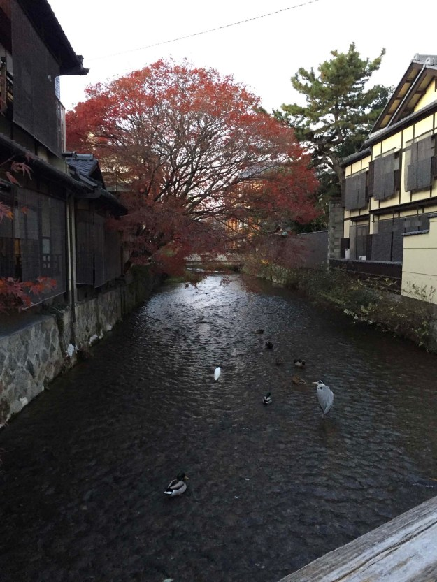 Beautiful Kyoto is about an hour's train ride away.