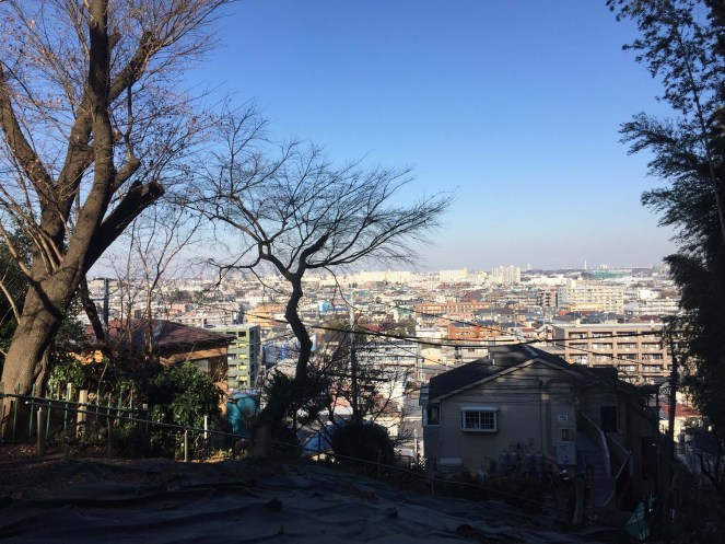 View from a Kawasaki hilltop on one of many morning walks.