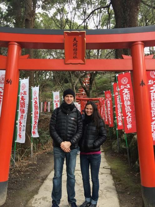 More beautiful torii gates.