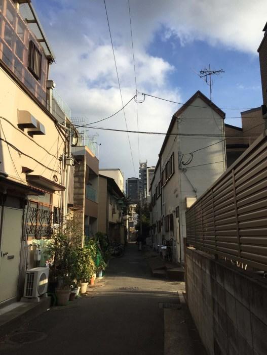 Alleys in our neighborhood.