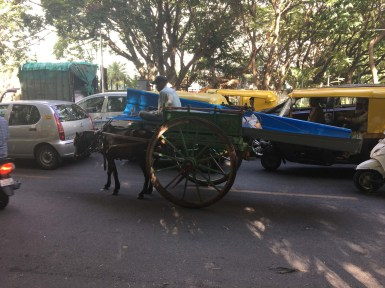 Some of the many available methods of transport are presented in this photo.
