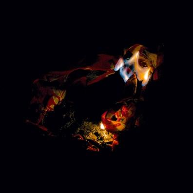 Fire, Wish 1, 2015