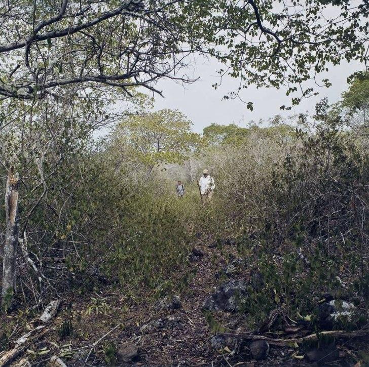 Tegan Walking Down Path - 2005 - 15 x 15 - Chromogenic Print
