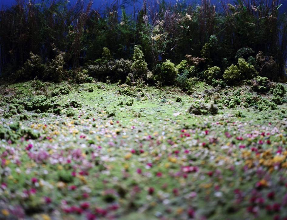 Field of Flowers - 2003 - 20 x 30 - Chromogenic Print
