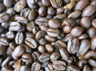 Freshly roasted coffee beans in the coffee region of Colombia