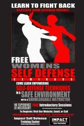 Impact Martial Arts Flyer