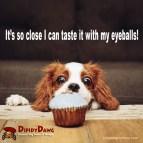 Dipidy Dawg Bakery