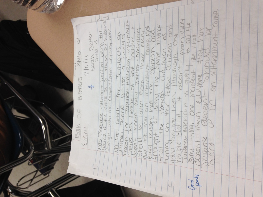 Projects Essays
