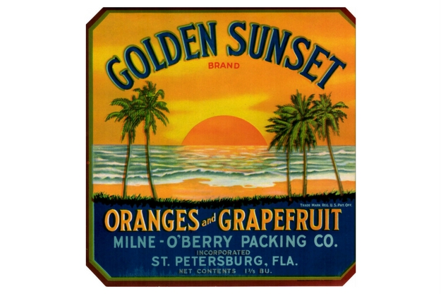Golden Sunset brand oranges and grapefruit. Milne-O'Berry Packing Company, Saint Petersburg, Florida.