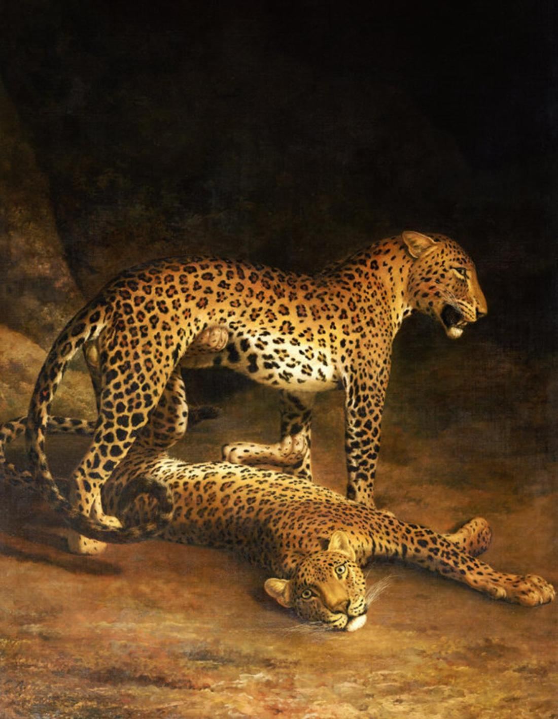 """""""Two Leopards Lying in the Exeter Exchange."""" ca. 1808."""