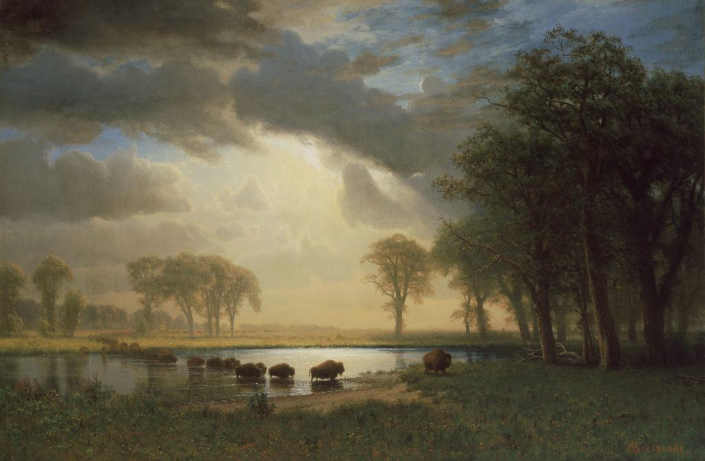 """Buffalo Trail."" ca. 1867."