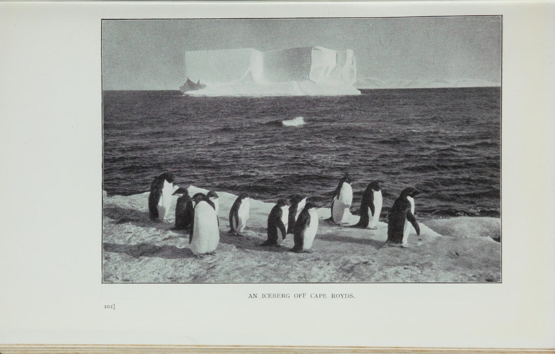 """""""An Iceberg off Cape Royds."""" Page 169."""