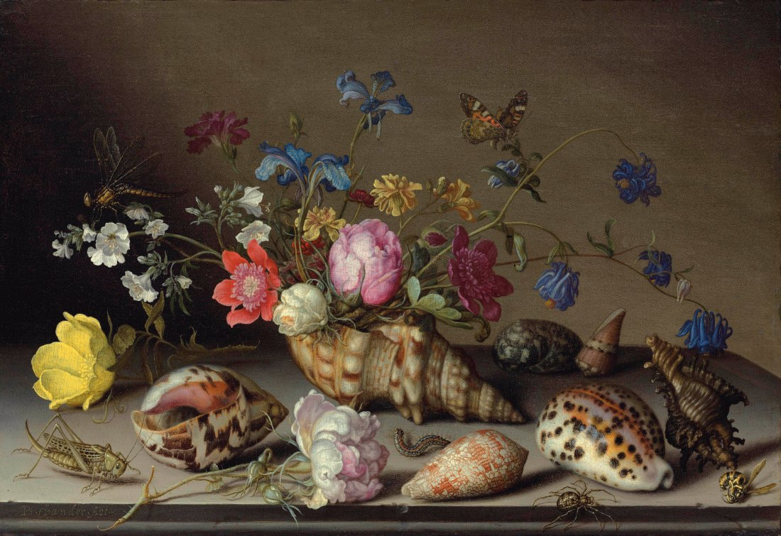 """Flowers, shells and insects on a stone ledge.""No date."