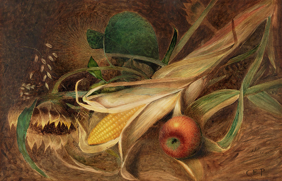 """Still life with Corn."" ca. 1880."