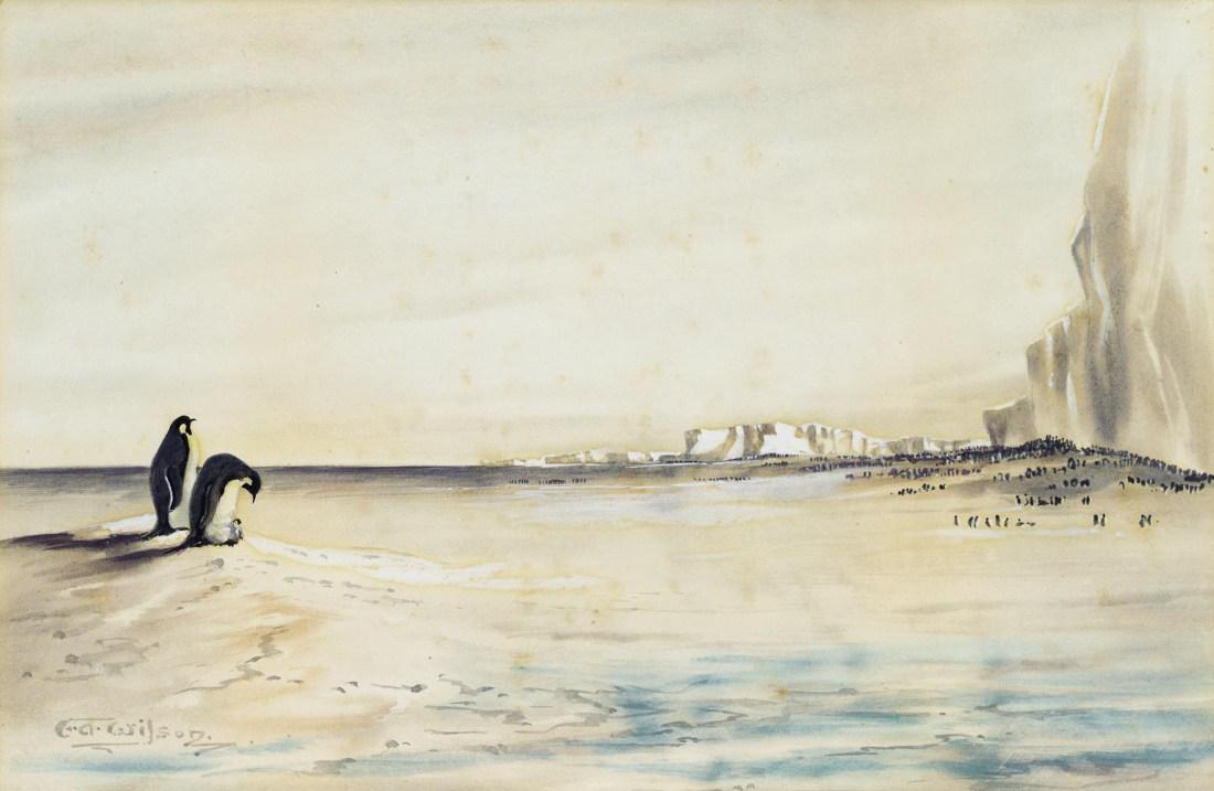 """The Emperor Penguin Rookery, Cape Crozier."" No date."