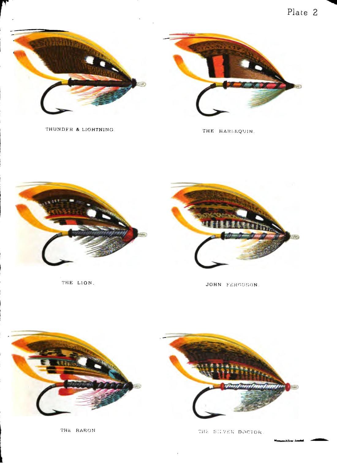 salmonflyhowtod00kelsgoog_0103