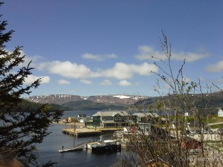 Newfoundland phone shots WM-6