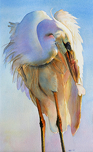 watercolor of preening egret