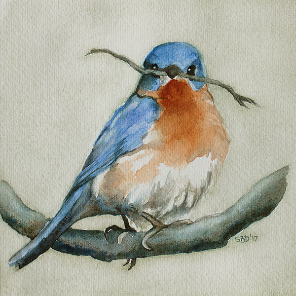 watercolor of bluebird