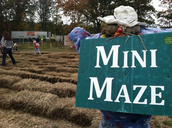 Corn Maze & Other Festive Fall Activities Near Boston