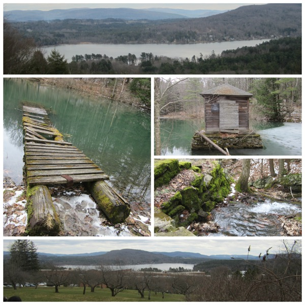 Kripalu Collage