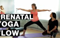 Video: 15 minute Prenatal Yoga Flow