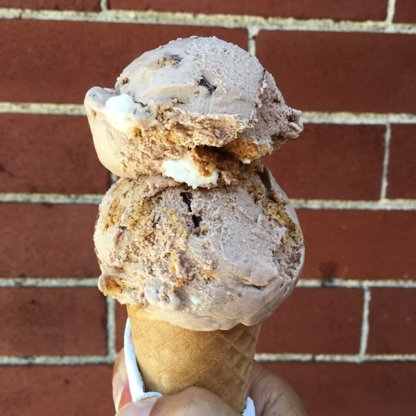 FOMU Smores ice cream vegan