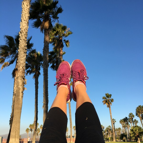 California palm trees running