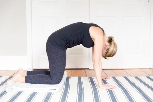 prenatal workout modifications plank yoga bird dog