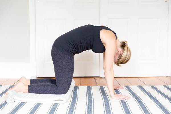 prenatal workout modifications plank yoga bird dog