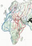 migration-routes-eu-afr-asia-600