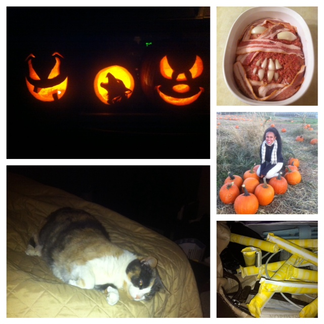 Hello Amber - Hmmm...Amber, are you an amazing pumpkin and food artist who has a pregnant cat that is about to give birth in two weeks and you're hoarding tampons for the apocalypse? How close am I?