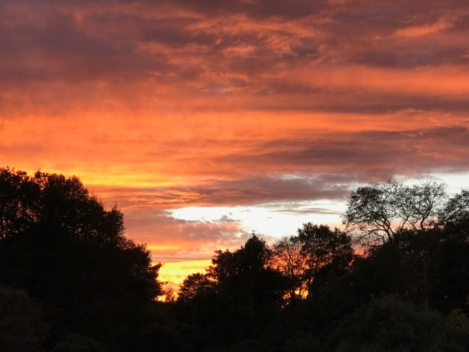 IMG 0605 - A Sunset For the Soul