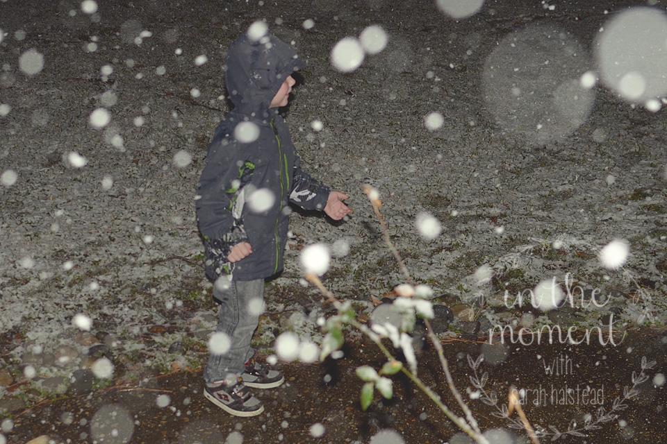 4. Winter Wonderland