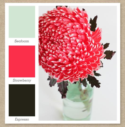 mint green bright pink dark brown color palette