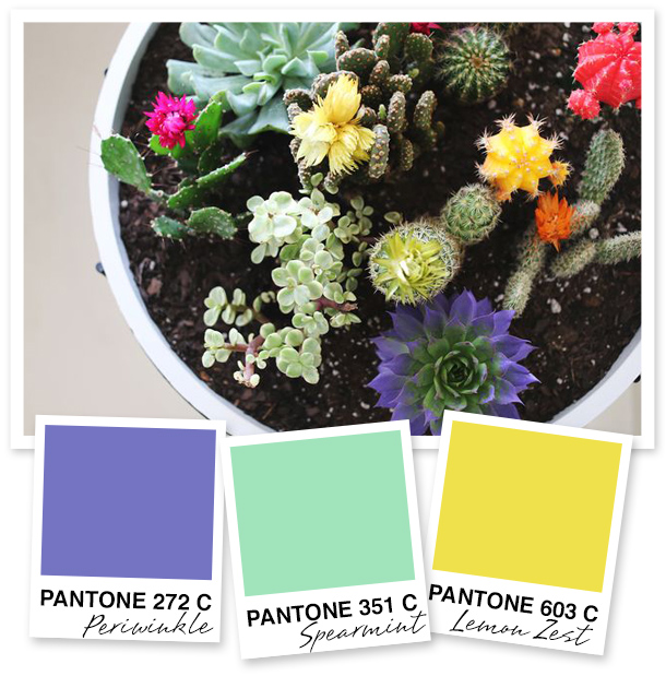 This color palette would be so perfect for a Mexican themed party—complete with piñatas and margaritas!