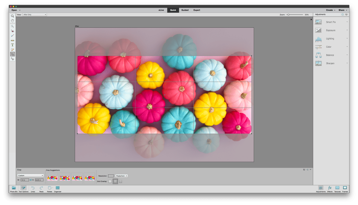 Learn how to use Photoshop Elements 15 to make your own fall inspired tray!